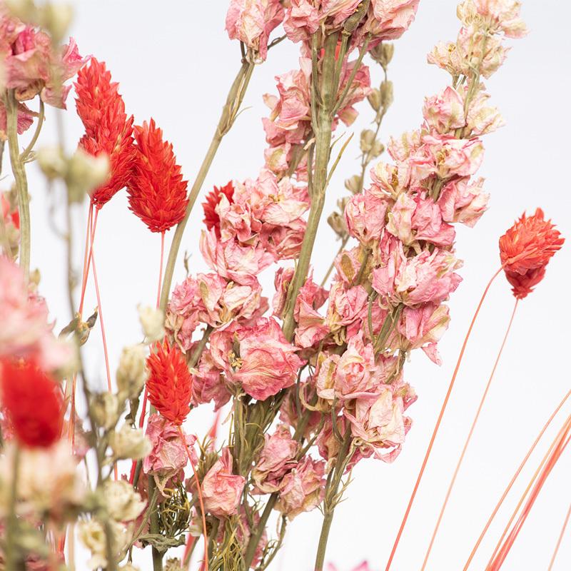 Wie pflegt man Trockenblumen