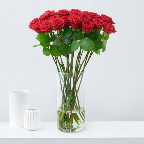 Weihnachtsblumen-rote-Rosen weihnachten