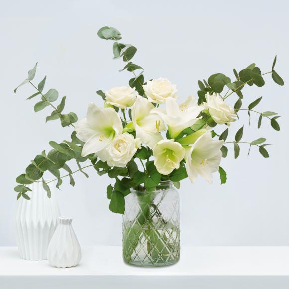 Weihnachtsblumen-weiße-amaryllis-weihnachten
