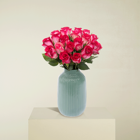 Pinke Rosen M
